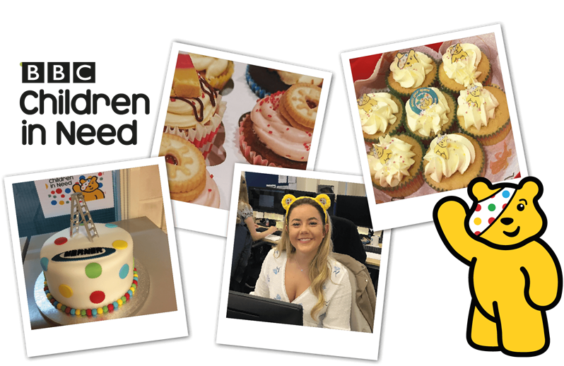 Werner Ladder Supports BBC Children In Need