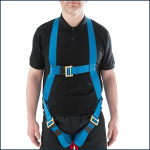 Werner One Point Fall Arrest Harness