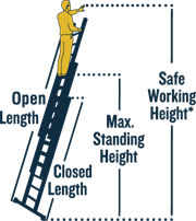 Werner Ladder EU Extension Ladder Height